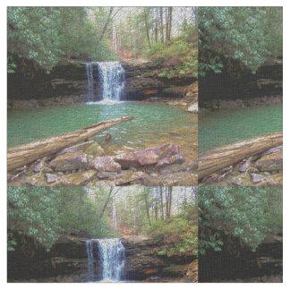 荒野のアパラチア地方住民の滝 ファブリック