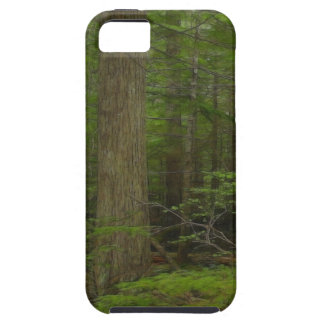 荒野の森林自然の景色のiPhone 5の場合 iPhone SE/5/5s ケース