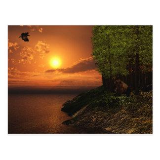 荒野の生命 ポストカード