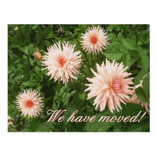 菊の花が付いているエレガントな移動郵便はがき はがき