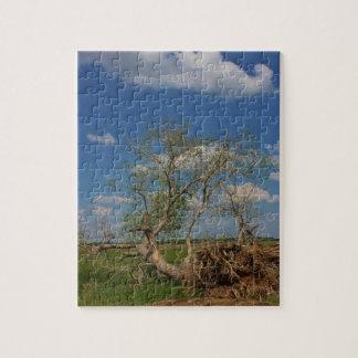 落ちたな木のパズル ジグソーパズル