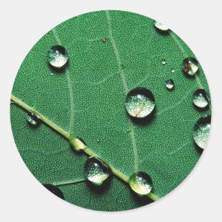 落ちたなleaf.jpgの抽象芸術色の雨滴 ラウンドシール