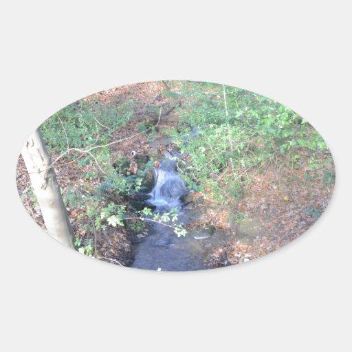 落ちた 葉 森林 床 卵形シールステッカー