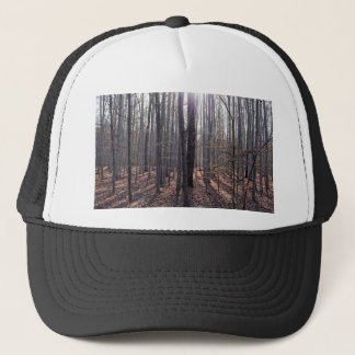 落下のブナの森林 キャップ