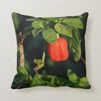 葉に対する赤いhabanernoのトウガラシ クッション