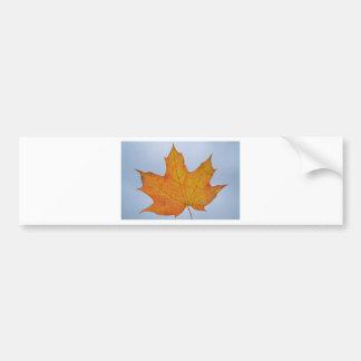 葉のイメージ バンパーステッカー