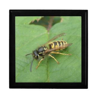 葉のギフト用の箱のHoverfly ギフトボックス