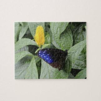葉のストライプので青いカラス(Euploeaのmulciber)、 ジグソーパズル