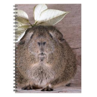 葉の帽子を身に着けているかわいい灰色のモルモット ノートブック