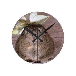 葉の帽子を身に着けているかわいい灰色のモルモット ラウンド壁時計