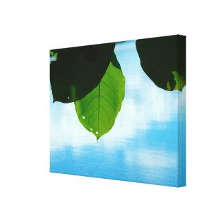 葉の平静 キャンバスプリント