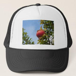 葉の木の独身ので赤いザクロのフルーツ キャップ