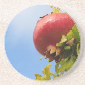 葉の木の独身ので赤いザクロのフルーツ コースター