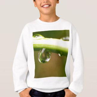 葉の水低下 スウェットシャツ