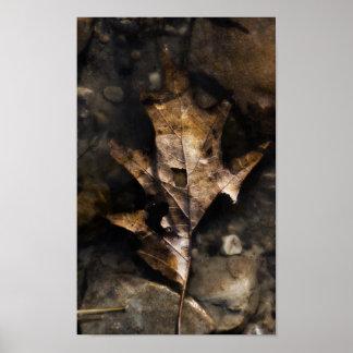葉の美しい ポスター