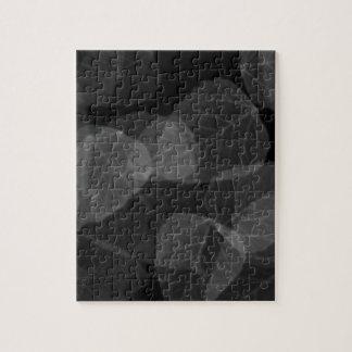 葉のX線 ジグソーパズル