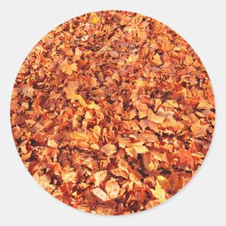 葉は秋にカーペットを敷きます ラウンドシール