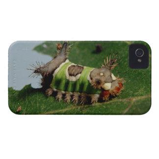 葉を食べている幼虫 Case-Mate iPhone 4 ケース