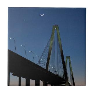 薄暗がりのアーサーRavenel Jr.橋 タイル