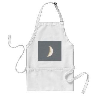 薄暗がりのエプロンの美しいワックスを掛ける三日月形の月 スタンダードエプロン