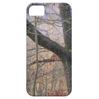 薄暗がりのカラフルな森林 iPhone SE/5/5s ケース