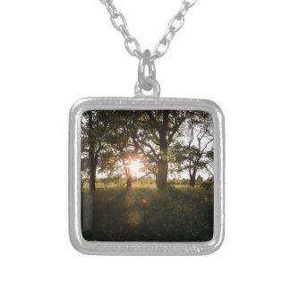 薄暗がりの日光の木が付いているシルエットの木 シルバープレートネックレス