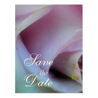 薄紫のばら色の結婚式 ポストカード