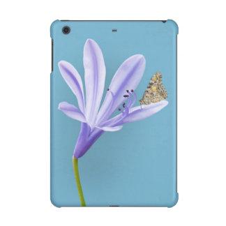 薄紫のワスレグサの花および蝶