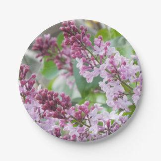 薄紫の春の紙皿 ペーパープレート