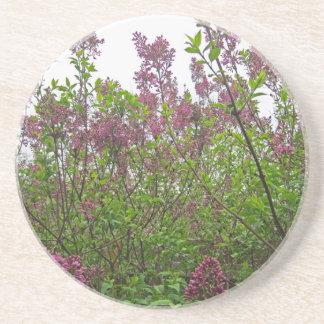 薄紫の春 コースター