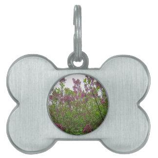 薄紫の春 ペットネームタグ