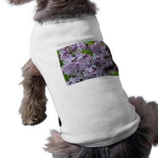 薄紫の束 ペット服