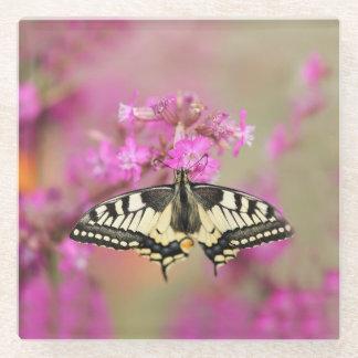 薄紫の花のクローズアップのありの蝶 ガラスコースター