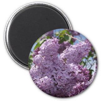 薄紫の集り マグネット