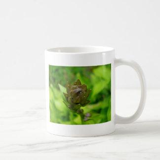 薄紫のHostAの開花 コーヒーマグカップ