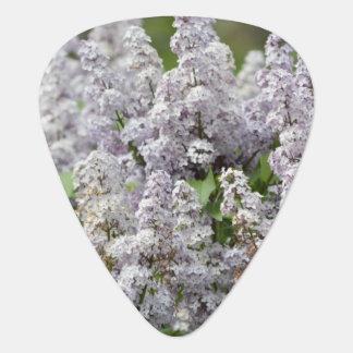 薄紫 ギターピック