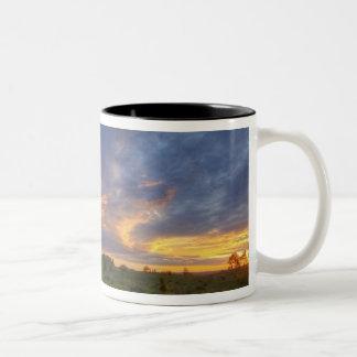 薬の石の豪華な日没の空 ツートーンマグカップ