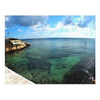 藻および青空が付いている水 ポストカード