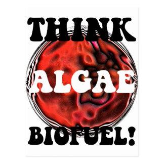 藻の生物燃料を考えて下さい ポストカード