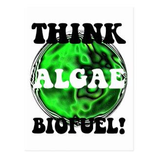 藻の生物燃料を考えて下さい! ポストカード
