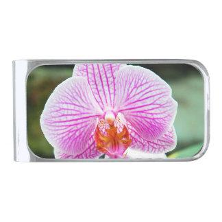 蘭のピンクのアジア花の花柄 シルバー マネークリップ