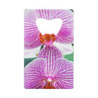蘭のピンクの熱帯アジア花 クレジットカード 栓抜き