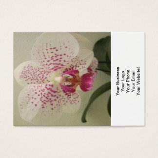 蘭の紫色ははねかけます 名刺
