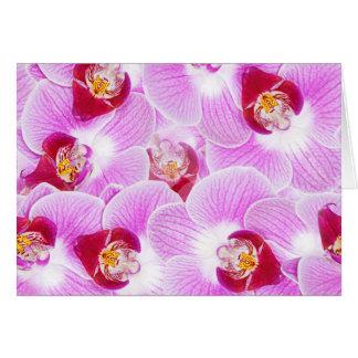 蘭の花の写真の抽象的な背景 カード