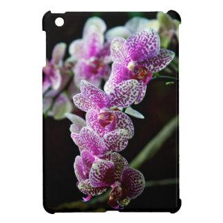 蘭の花の写真iPad Mini iPad Mini カバー