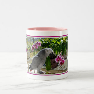 蘭を持つアフリカ灰色のオウム ツートーンマグカップ
