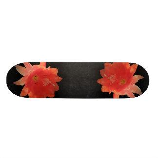 蘭サボテン- Epiphyllum Ackermannii -花 オリジナルスケートボード