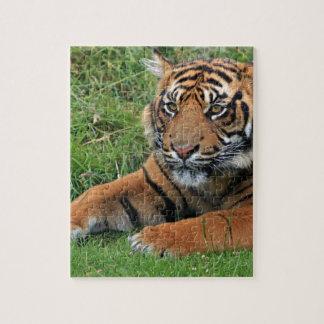 虎の子のポートレート ジグソーパズル