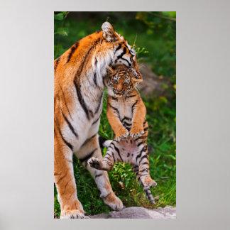 虎の子 ポスター