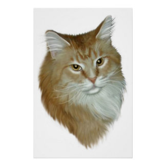 虎猫のメインの赤いあらいぐま ポスター